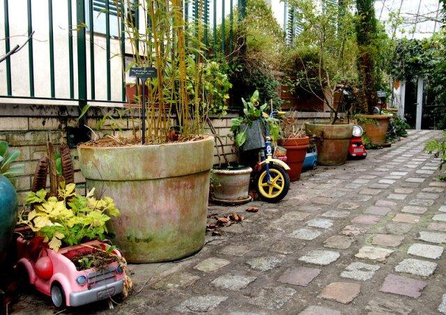 回收玩具盆栽